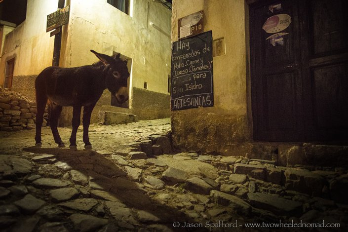 'Eee awwe', on donkey patrol