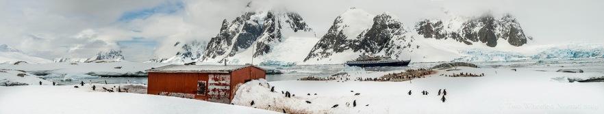 Antarctic paradise