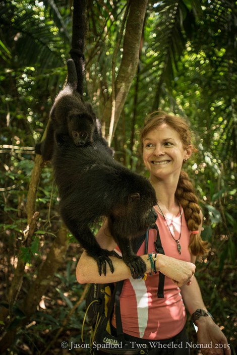 Getting up close and personal with a family of howler monkeys