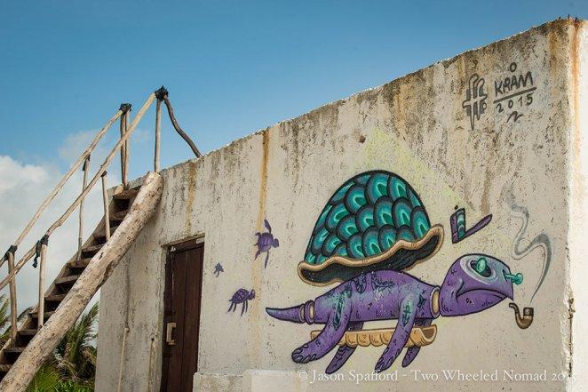 Turtles-are-us at Maya Luum, Tulum