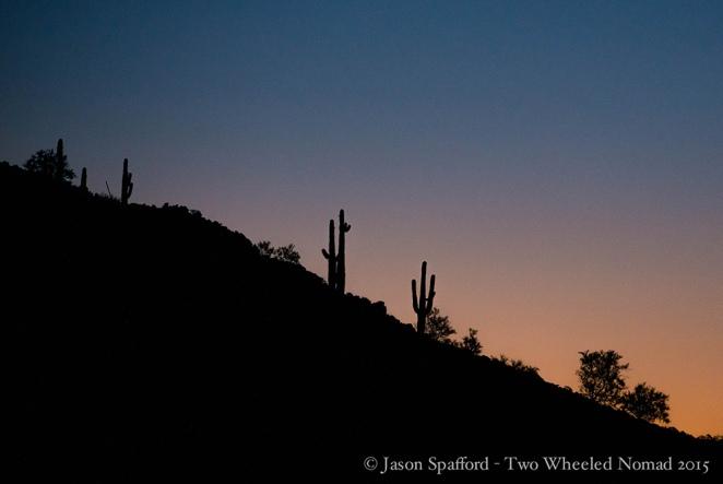 Iconic desert shot by night