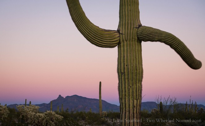 Goodnight sun, good evening to you dusk. (Organ Pipe Cactus National Monument, AZ.)
