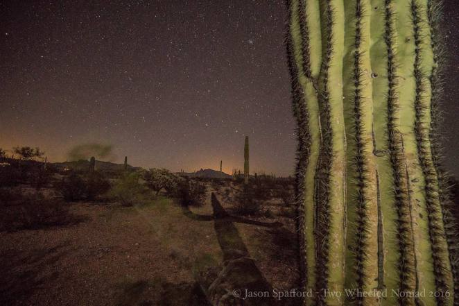 Moon shadows will excite as much as wash the place in light. (Organ Pipe Cactus National Monument, AZ.)