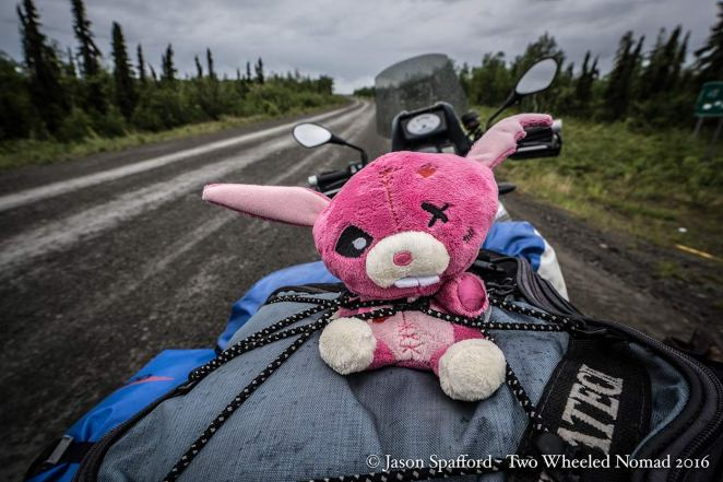 Even Kristina's pillion, Zombie Bunny doesn't look in his happy place on the slick.